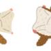 「モモンガ」と「ムササビ」と「ヤマネ」の違い!ペットとして飼育できるの?